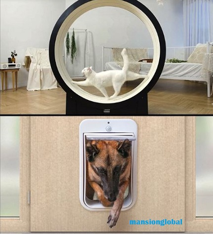 Smart Home: Transform your space into a pet paradise